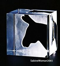 NEW in BOX STEUBEN art glass DONKEY BLOCK PAPERWEIGHT crystal PRISM ornament DNC
