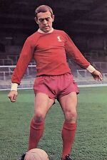Football Photo IAN ST JOHN Liverpool 1968-69