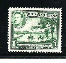 British Guiana Stamps- Scott # 230/A52-1c-Mint/LH-1938-52-OG