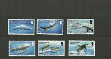 BRITISH ANTARCTIC 2015 NEW ISSUE WHALES SET MNH