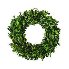 "Preserved Boxwood Leaves Wreath Green (11"") Smith & Hawken™"