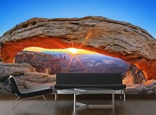 Sunrise at Mesa Arch in Canyo 3D Wallpaper Mural Wall Paper Background Furniture