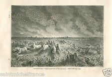 Landscape Horses Buffalo Meadow fire Valnut-Creek River USA GRAVURE PRINT 1860