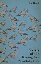 Secrets of the Racing Ace - Pigeon Racing Secrets by Old Hand (2011, Paperback)