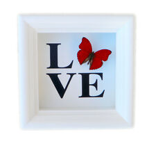 Real Framed Butterfly LOVE Shadowbox - Butterfly Home Decor - Wedding Gift
