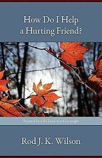 How Do I Help a Hurting Friend? : Practical Help for Leaders and Laypeople by...
