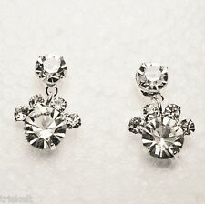 Crystal Post Earrings PAWPRINTS Clear Crystal * Gift Boxed