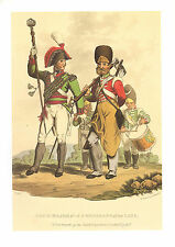 WELLINGTONS ARMY MILITARY UNIFORM PRINT ~ DRUM MAJOR REGIMENT OF THE LINE