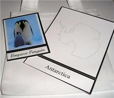 ANTARCTICA SET Geography Social Studies Montessori Materials Continent Box