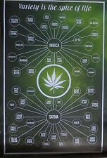 Variety Spice Of Life-Marijuana-Cannabis-Licensed POSTER-90cm x 60cm-Brand New