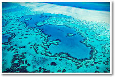 Great Barrier Reef - Australia Travel Nature Habitat Classroom - NEW POSTER