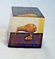 """Paperweight with Gold Kiwi Bird inside Clear Plastic New Zealand 2 1/4"""" tall"""