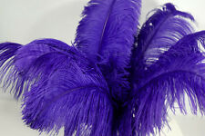 "2 PURPLE Ostrich FEATHERS 23-28"" Full Wing PLUMES; Bridal/Wedding/Centerpiece"