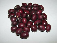 "20 Certified Organic ""True Red Cranberry"" Pole Bean Seeds ~Vine"