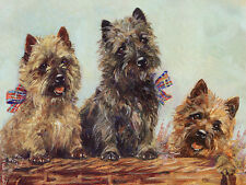 CAIRN TERRIER CHARMING DOG GREETINGS NOTE CARD THREE CUTE DOGS IN BASKET