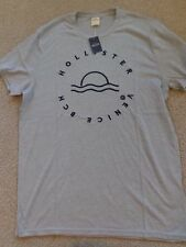 Hollister Men T Shirt Tee Logo Applique Graphic TEE Embroidery Sz LARGE GREY
