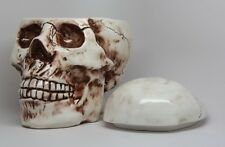 Homosapien Skull With Fracture Wounds Ceramic Cookie Jar Kitchen Accessory