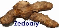 1 oz. Zedoary Curcuma Rhizome zedoaria Thailand Herb Edible Good Health Garden