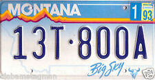 1993  MONTANA~13T-800A~GOLDEN MOUNTAINS~BIG SKY~LICENSE PLATE~TAG