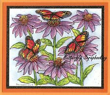 MONARCH BUTTERFLY CONEFLOWERS Wood Mounted Rubber Stamp NORTHWOODS P9937 New