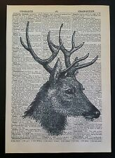 Vintage Stag Deer Head Print Original Dictionary Book Page Wall Art Picture