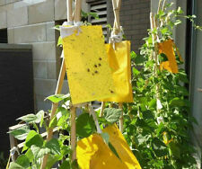 5x Yellow Sticky Insect Aphid White fly Thrip Fruitfly Leafminer Trap #M1345 QL