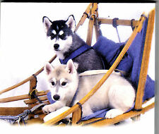 Siberian Husky  List Pads ...Adorable ! 2 puppies ...2  pads .. 100 sheets