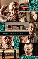 Breaking Bad Version F Tv Show Poster 14x20  inches