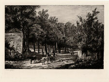 "JOHN CROME 1800s Etching ""A View of Chapel-Fields, Norwich"" SIGNED COA Detailed"
