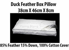 2X Luxury Duck Feather BOX Pillow 85% Feather 15% Down with 100% Cotton Cover