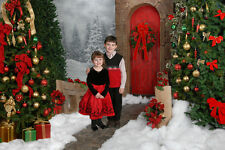 Christmas Scenes vol 4 Digital Backdrops 25 Photo Backgrounds on CD