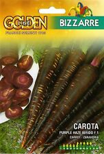 40 Semi/Seeds CAROTA Purple Haze Ibrido F.1