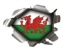 SPEED DEMONS PRIDE BURST STICKER RIP TORN TEAR CAR  LAPTOP WALES WELSH DRAGON