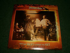 """What You Want Is What You Get The Barracudas~RARE 2005 Garage Rock 2 Track 7"""""""