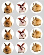 12 Rabbit Bunny Cupcake Toppers ricepaper Fluffy Bunnies pet Cake Decoration