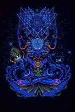 Psychedelic Art Shaman Space UV Fluorescent Glow Print Fabric Backdrop Banner