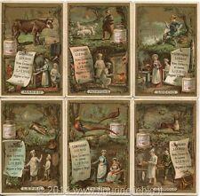 Chromo Liebig Sang. 193 ITA Cuochi e Cuoche II ANNO 1887