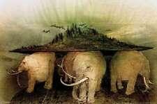Elephant World Animal Poster 24x36 Poster Service