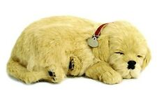 Perfect Petzzz Golden Retriever puppy dog  Plush battery powered breathing toy
