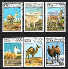 Animaux Camélidés Sahara occidental (103) série complète 6 timbres oblitérés