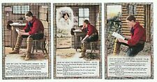 "Set of 3 Bamforth Song Cards ""Give my Love to Scotland Maggie"", unposted, 4702"