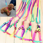 New Adjustable Pet Dog Puppy Cat Rabbit Kitten Nylon Harness Collar Leash Lead