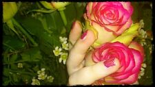 25 Perfum Rosensamen  Nr 2