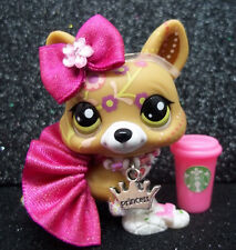 LITTLEST PET SHOP CUTE POSTCARD CORGI #1851 SKIRT BOW STARBUCKS ACCESSORIES