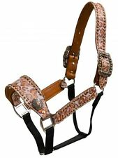 Showman Belt Style Horse Halter BURNT ORANGE Filigree Print Barrel Racer Conchos