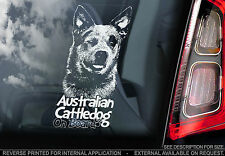 Australian Cattledog - Car Window Sticker - Cattle Dog Blue ACD Gift Art - TYP3