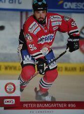 Peter Baumgartner EV Landshut 2014-15 DEL2-091