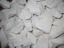 Georgias Finest kaolin clay chunk White Dirt