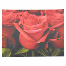 Wall Canvas Floral Rose Home Decoration Large 80 x 60cm Print Picture Panel Art