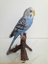 Budgie Budgerigar Bird Blue Vivid Art Pet Pals Garden Ornament